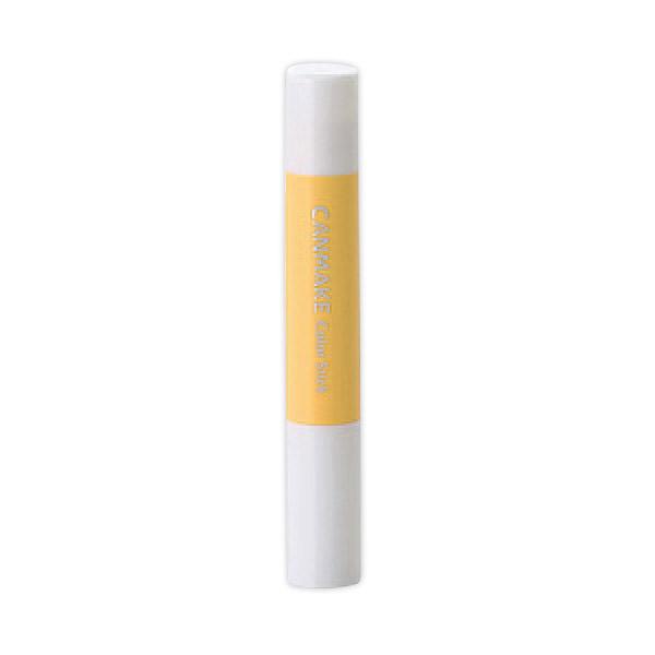 Color Stick 遮瑕膏 (08 金黃色)